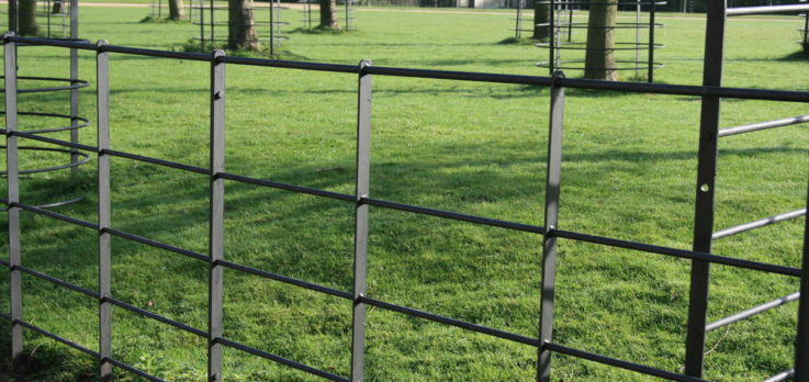 Classic Steel Estate Fencing and Tree Guards